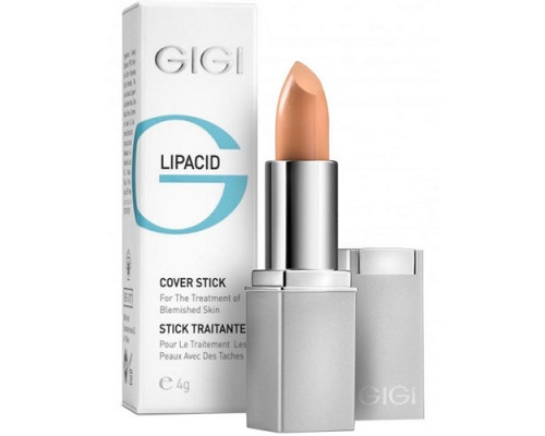 GIGI Lipacid Anti Bacterial Concealer Cover LipStick
